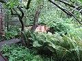 Aménagement paysager, dans les Jardins de Métis, Grand-Métis, Qc - panoramio (2).jpg