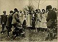 American forestry (1910-1923) (18146280175).jpg