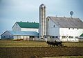 Amish Farming-Lancaster Pennsylvania.jpg
