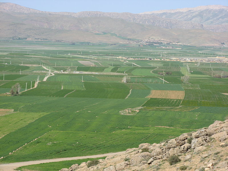 Պատկեր:An unique beauty and the splendor of the Khanmirza agricultural plain 2010.jpg
