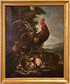 Angelo maria crivelli detto il crivellone, animali da cortile, gallo, due galline e sette pulcini, 1690-1700 ca.JPG