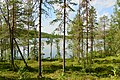 Angsjön, Björnlandet 3.jpg