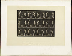 Animal locomotion. Plate 374 (Boston Public Library).jpg