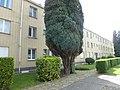Antwerpen Boeksveldplein - 258129 - onroerenderfgoed.jpg
