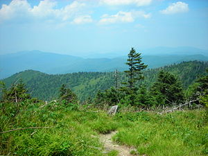 The Appalachian Trail, which leads over 2,100 ...