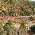 Arashiyama Genrokuzancho, Nishikyo Ward, Kyoto, Kyoto Prefecture 616-0007, Japan - panoramio (8).jpg