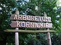 Arboretum, Kórnik 2010 (27).jpg