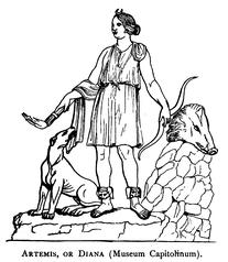 Artemis, Diana (Museum Capitolinum).png