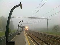 Aruküla raudteepeatus, rongi saabumine udusel hommikul, 20. juuni 2013.jpg