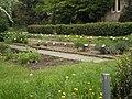 Arzneipflanzengarten im Alten Botanischen Garten Marburg mit Buchsbaumhecken-Einfassung, 2019-05-05.jpg