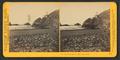 At the Cliff House, San Francisco, by Watkins, Carleton E., 1829-1916 6.png