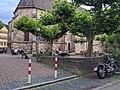 Außenbereich des Wirtshaus zum tänzelnden Pony in Tübingen.jpg
