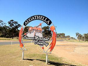 Augathella - Augathella Cosmos Meatant Country