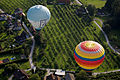 Austria - Hot Air Balloon Festival - 0477.jpg