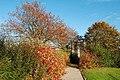 Autumn Colours - geograph.org.uk - 1539611.jpg