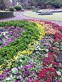 BCBG Rainbow Garden 03.jpg