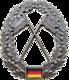 BW Barettabzeichen Heeresaufklärungstruppe.png