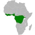 Baeopogon distribution map.png