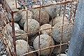 Ballistra round shots found at Gamla ruin.jpg