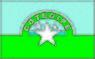 Bandeira Cotegipe Bahia.jpg