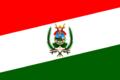 Bandera de Cerro Colorado.png