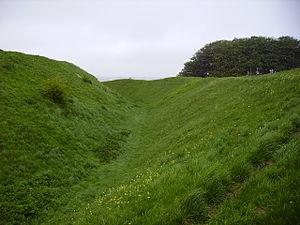 Barbury Castle - Steep earthworks (with cowslips) looking northwards