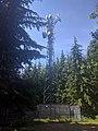 Bear Mountain radio tower - panoramio.jpg