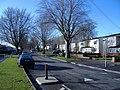 Beech Avenue - geograph.org.uk - 309204.jpg