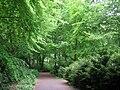 Berlin Tiergarten vista - IMG 8363.JPG