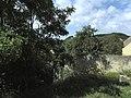 Beroun-Tetín-Srbsko - panoramio (31).jpg