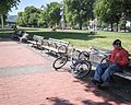 Bicyclist on a Bench.jpg