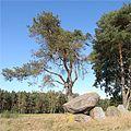 Bierstedt-Steingrab-c.jpg