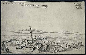 Battle of Birch Coulee - Battlefield carnage two months after the incident.
