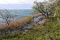 Biwako Quasi-National Park Omihachiman04s4s3200.jpg