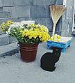 Black cat in flowers combination.jpg
