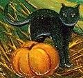 """Black cat with pumpkin art detail, """"A Merry Halloween."""" (cropped).jpg"""