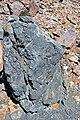 Black smoker rocks (sulfidic wad) (Helen Iron-Formation, Neoarchean, 2696-2749 Ma; Sir James Pit, Eleanor Iron Range, Ontario, Canada) 15 (48069862141).jpg