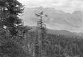 Blick ins Oberengadin - CH-BAR - 3241558.tif