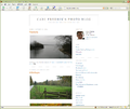 BlogAbelsonInfo.png