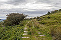 Bodmin Moor, Cornwall. Remains of the Liskeard and Caradon Railway-9112.jpg