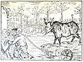 Boeuf gras (Père Peinard).jpg