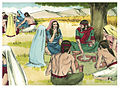Book of Ruth Chapter 2-7 (Bible Illustrations by Sweet Media).jpg