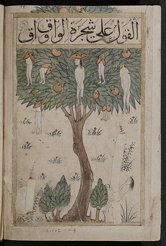 "Wāḳwāḳ - The Waq-waq tree. Illustration of a tale. Page from a manuscript known as Kitab al-bulhan or ""Book of Wonders"" held at the Bodelian Library. Shelfmark: MS. Bodl. Or. 133"