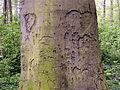 Bornumer Holz-Marmorstein und Eisen.JPG