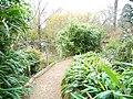 Botanic Gardens - A Pathway - panoramio.jpg