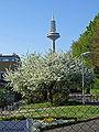 Botanischer-garten-47ffm-002.jpg
