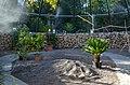 Botanischer Garten der Universität Zürich - Erneuerung Schauhäuser 2012-10-19 13-53-06.JPG