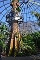 Botanischer Garten der Universität Zürich nach Umbau - 'Tiefland' 2014-03-08 14-54-28.JPG