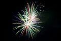 Bray Fireworks (6994403849).jpg
