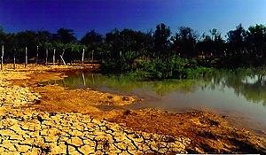 Semi-arid climate